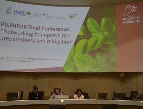 PLURIFOR project comes to an end with an innovative and unprecedented transnational collaboration on forest risks management